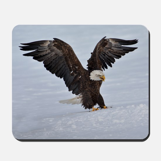 The Eagle has landed Mousepad