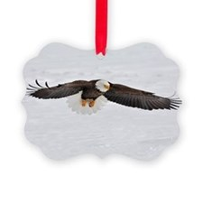 Eagle flying low Ornament