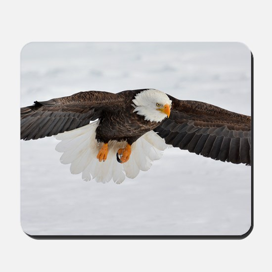 Eagle Flying Low Mousepad