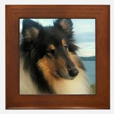 Collie by the Ocean Framed Tile