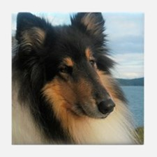 Collie by the Ocean Tile Coaster