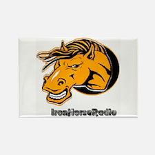 IHRA apparel Rectangle Magnet (100 pack)