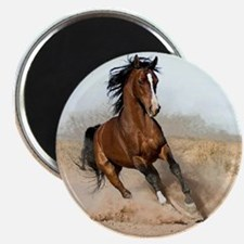 "IHRA apparel 2.25"" Magnet (10 pack)"