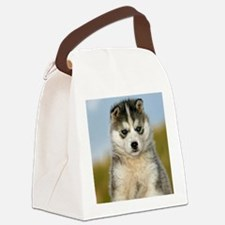 Cool Siberian Canvas Lunch Bag