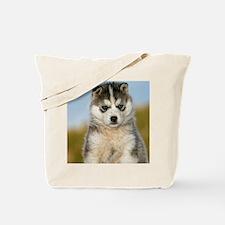Cute Siberian Tote Bag