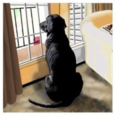 Ajax Watches the World Go By Poster