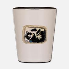 Unique Tuxedo cats Shot Glass
