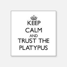 "Cute Platypus Square Sticker 3"" x 3"""