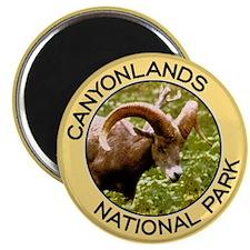 Canyonlands NP (Bighorn Sheep) Magnet