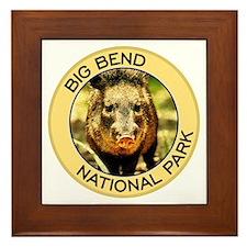 Big Bend NP (Javelina) Framed Tile