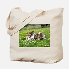 Sheltie Field of Dreams Tote Bag