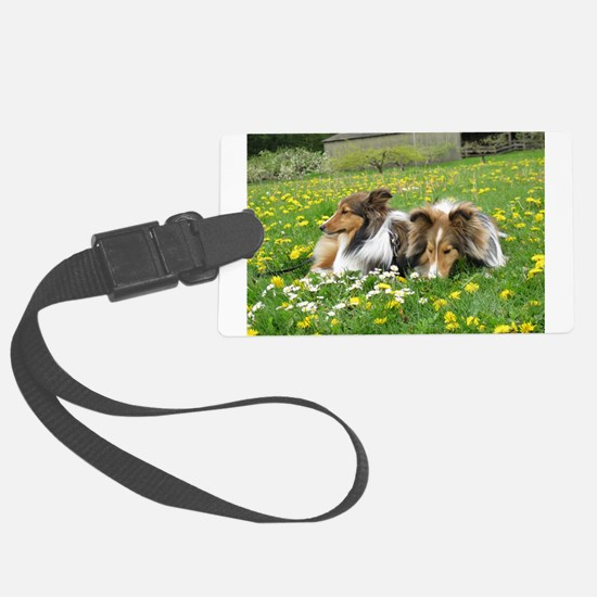 Sheltie Field of Dreams Luggage Tag