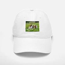 Sheltie Field of Dreams Hat