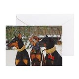 Doberman christmas Greeting Cards (20 Pack)