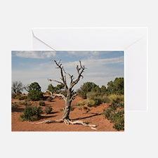 Dead Tree, Moab, UT Greeting Card
