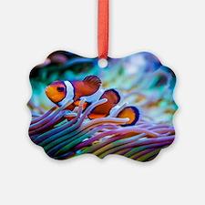 Clownfish Ornament