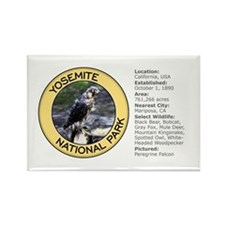 Yosemite NP (Peregrine Falcon) Rectangle Magnet