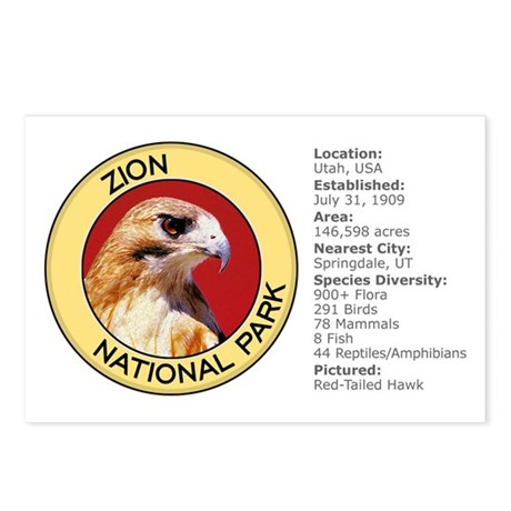 Zion NP (Hawk) Postcards (Package of 8)