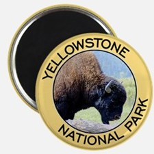 Yellowstone NP (Bison) Magnet