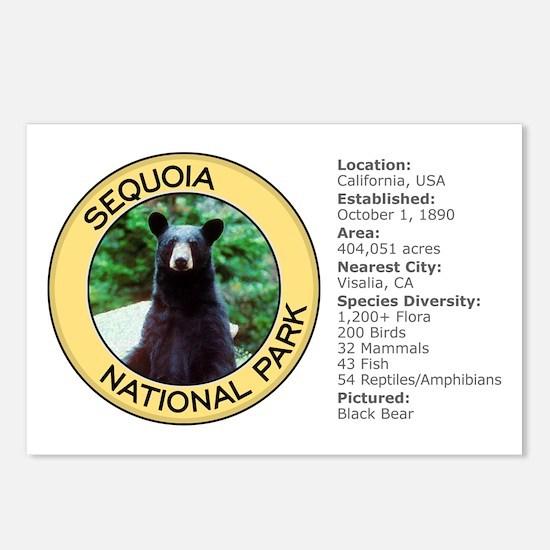 Sequoia NP (Black Bear) Postcards (Package of 8)