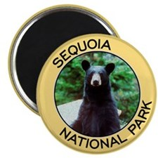 Sequoia NP (Black Bear) Magnet