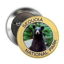 Sequoia NP (Black Bear) Button