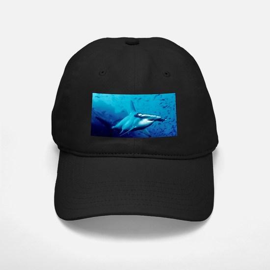 HAMMERHEAD Baseball Hat