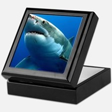 GREAT WHITE SHARK 3 Keepsake Box