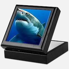 GREAT WHITE SHARK 3 Keepsake Box
