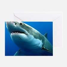 GREAT WHITE SHARK 3 Greeting Card