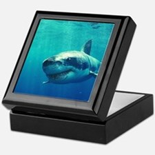 GREAT WHITE SHARK 1 Keepsake Box