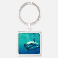 GREAT WHITE SHARK 1 Square Keychain