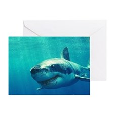 GREAT WHITE SHARK 1 Greeting Card