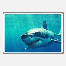 GREAT WHITE SHARK 1 Banner