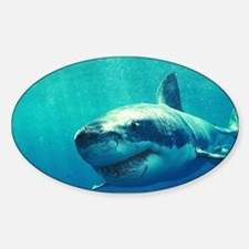 GREAT WHITE SHARK 1 Sticker (Oval)