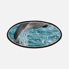 DOLPHIN Patch