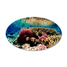 CORAL REEFS 1 20x12 Oval Wall Decal
