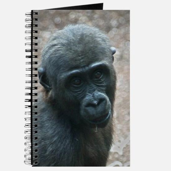 Gorilla20151003 Journal