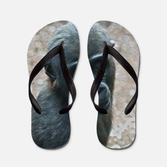 Gorilla20151003 Flip Flops