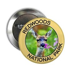 Redwoods NP (Deer) Button
