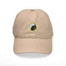 North Cascades NP (Bald Eagle) Baseball Cap