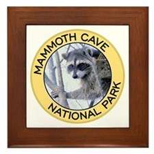 Mammoth Cave NP (Raccoon) Framed Tile