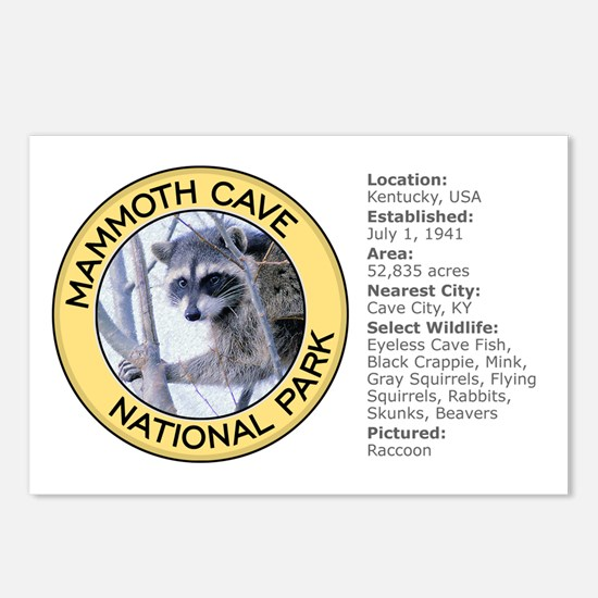 Mammoth Cave NP (Raccoon) Postcards (Package of 8)