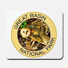 Great Basin NP (Barn Owl) Mousepad