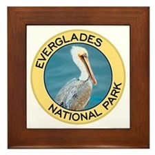 Everglades NP (Pelican) Framed Tile