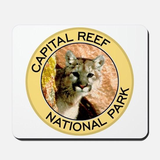 Capital Reef NP (Mountain Lion) Mousepad