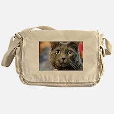Funny Russian blue Messenger Bag
