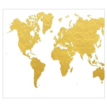 gold world map framed print