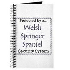 Welsh Springer Security Journal