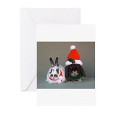 Cute Bunny rabbit Greeting Cards (Pk of 20)